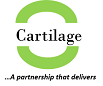 Cartilage Consulting Partners